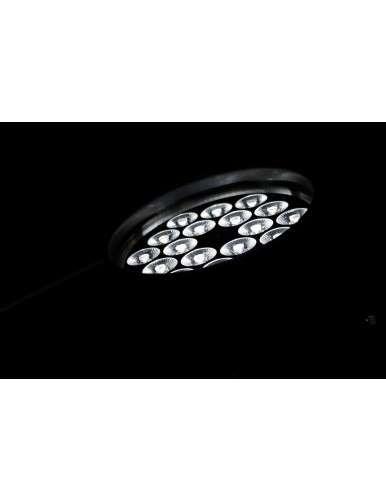 PAR LED 1810 FCB 2